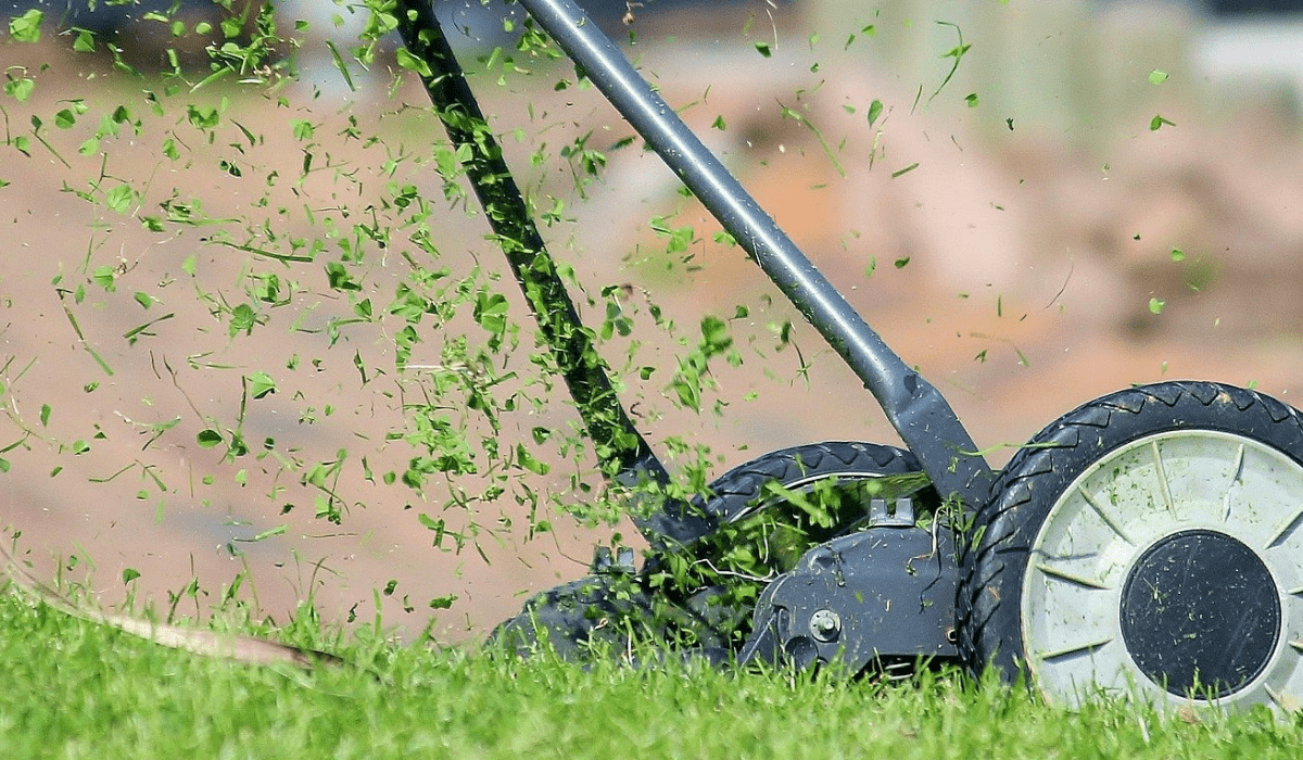 Reel Mowers Pros and Cons