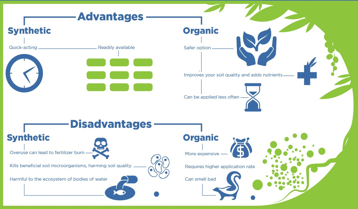 organic fertilizer infographic